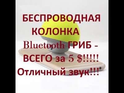 2e660dae4f71a1655ce29c59e113dffa